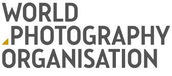 Image result for world photography organization